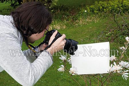 2%20custom%20white%20balance - نقش وایت بالانس در دوربین و عکاسی