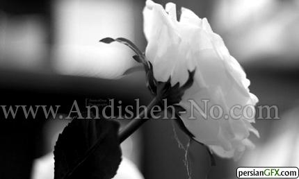 6Black%20and%20white%20photo%20rules - عکس سیاه سفید چیست