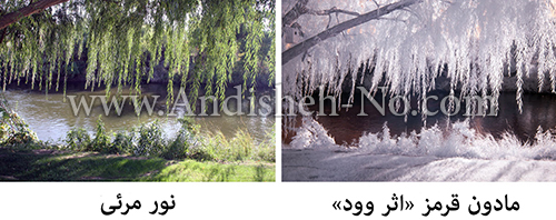 4Useful%20techniques%20for%20infrared%20photography - مادون قرمز در عکاسی