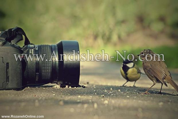 5Photographic%20eye%20and%20look%20at%20a%20good%20photographer - مشخصات عکاس خوب