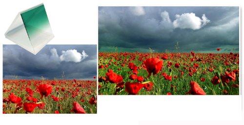 فرق عکاسی با فیلتر رنگی