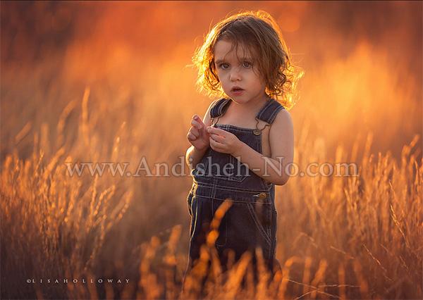 12Photography%20with%20natural%20sunlight - دلیل اهمیت نور خورشید و نور طبیعی در عکاسی و فیلمبرداری