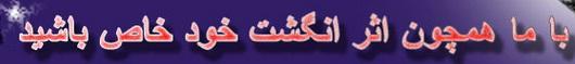 niazsamaneh%20logo%20photographer - نیاز سامانه - راه اندازی وب سایت جدید تبلیغاتی آتلیه عکاسی